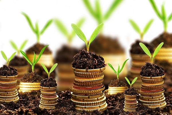 Melhores-Investimentos-Financeiros-a-Longo-Prazo-5