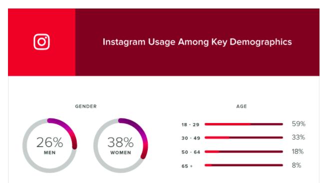 instagram-demographics